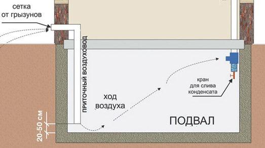 Организация сбора конденсата в вентиляции погреба